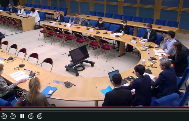 Audition commune sur la gestion de la crise sanitaire de la COVID-19 dans la region Ile-de-France